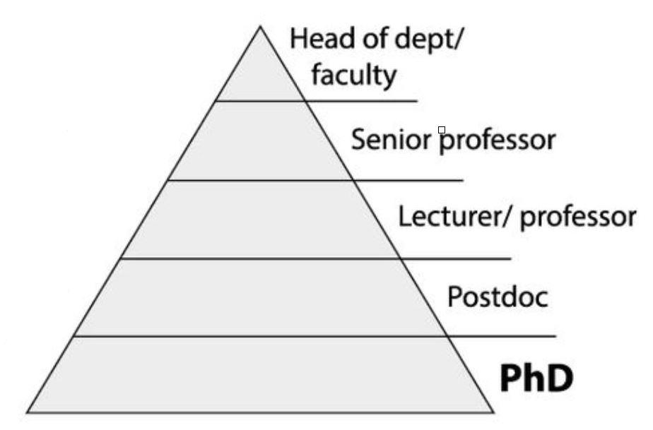 pyramid of James Hayton